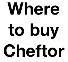 Where to buy Cheftor